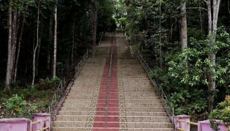 Taman Hutan Raya Sultan Syarif Hasyim Lokasi : Hutan Konservasi Siak, Minas Kabupaten Siak, Riau