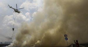 kebakaran hutan lahan riau